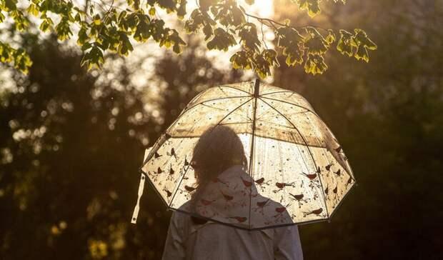 Шквалистый ветер и ливни с градом ожидаются в Ростовской области на 2 и 3 июня