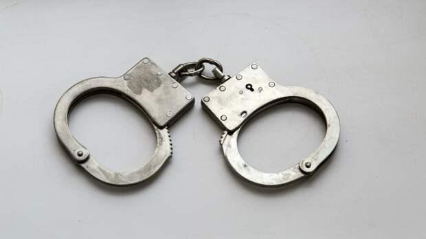 Задержанного на незаконной акции у МГУ депутата Тарасова отпустили