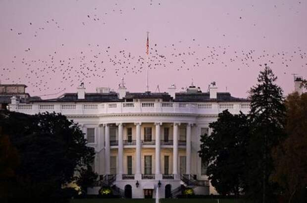 Birds fly over the White House at dusk, the day after a presidential election victory was called for former Vice President Joe Biden, in Washington, U.S., November 8, 2020. REUTERS/Erin Scott