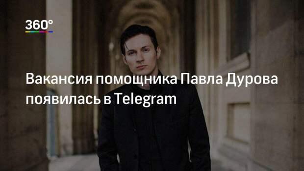 Вакансия помощника Павла Дурова появилась в Telegram