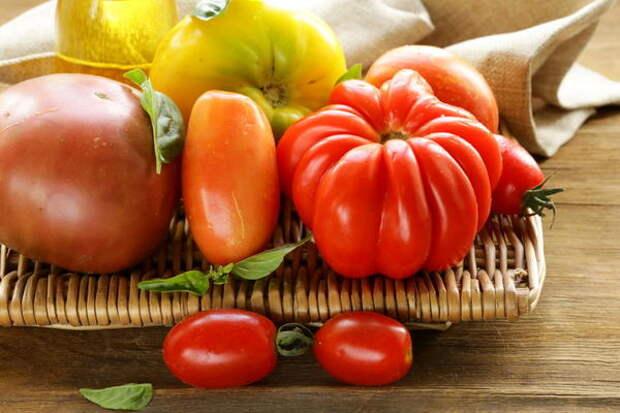 Сегодня мы поговорим о ребристых и длинноплодных сортах томатов