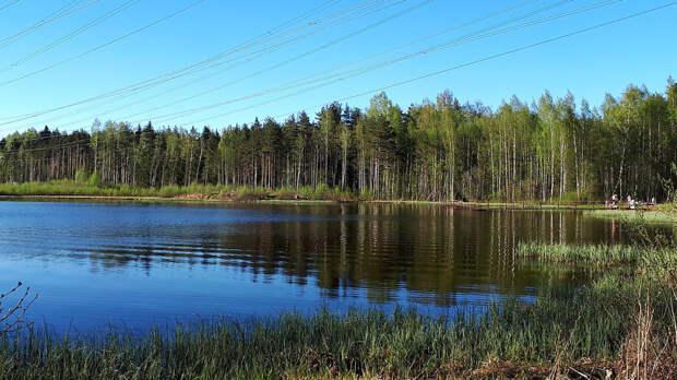 Россиянам рассказали, как задобрить водяного 16 апреля