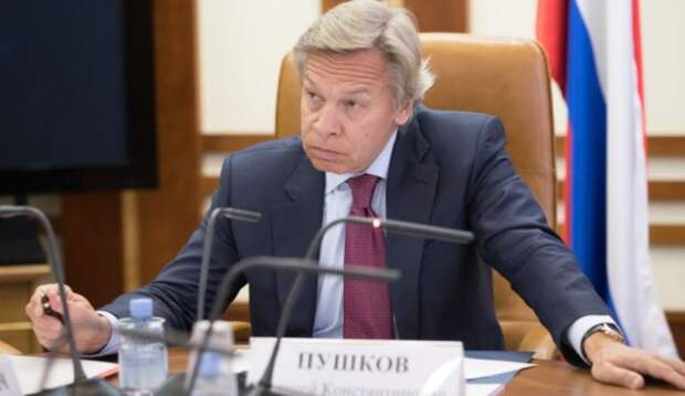 Пушков оценил ответ Лукашенко на критику со стороны Макрона