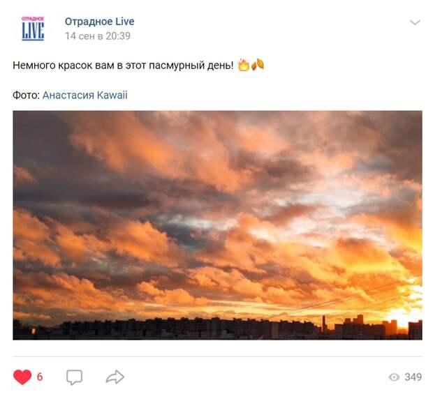 Фото дня: красочный закат в Отрадном