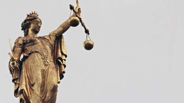 ФАН выяснил суть жалобы адвокатов ФБК в апелляционный суд