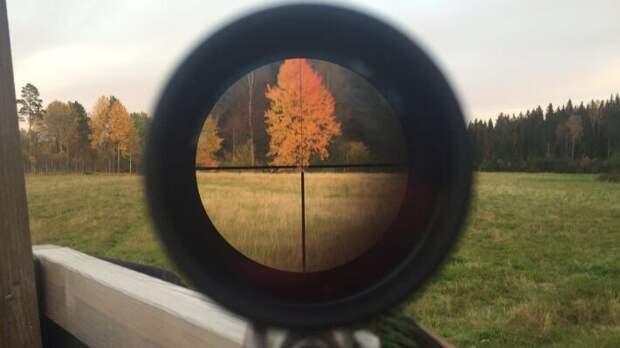 В России оружие приобретают для охоты или спорта