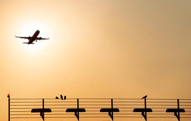 Sunset Airport Stuttgart by Peter König on 500px.com