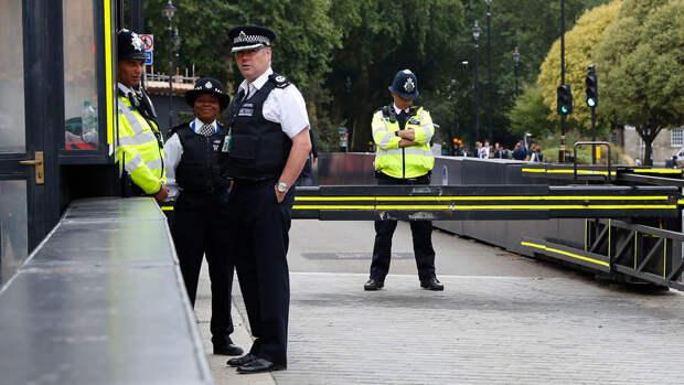 В Лондоне девять полицейских пострадали во время акции в поддержку Палестины