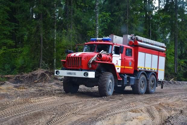Мгла в Удмуртии может быть связана с лесными пожарами в Мордовии