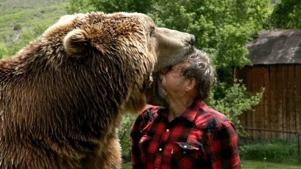 Treinador coloca a sua cabeça dentro da boca de um urso | Só ...