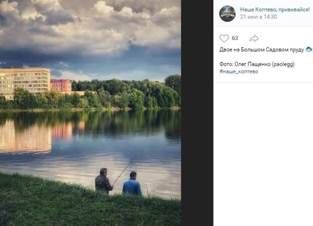 Фото дня: созерцатели у Большого Садового пруда