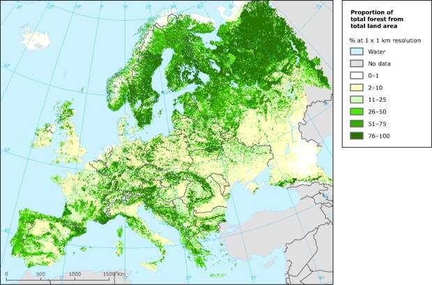 Россия зеленее Евросоюза, бизнес высаживает лес и лжезелёная энергия