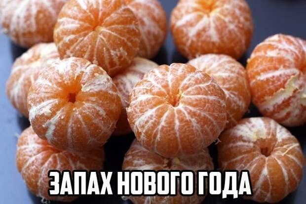 _udl4FzkUzk