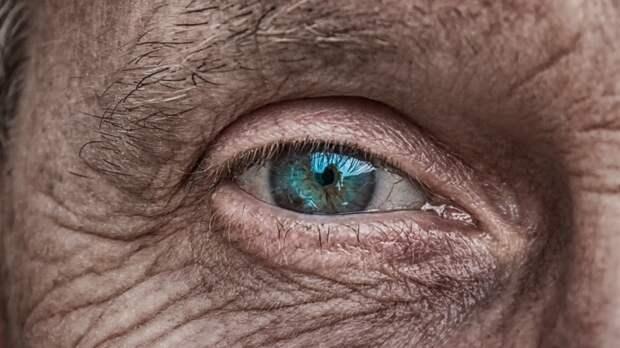 Найден способ уничтожения стареющих клеток организма