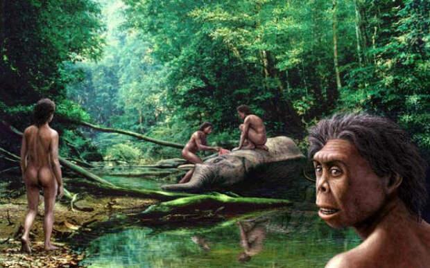 Загадка доисторических флоресийских карликов