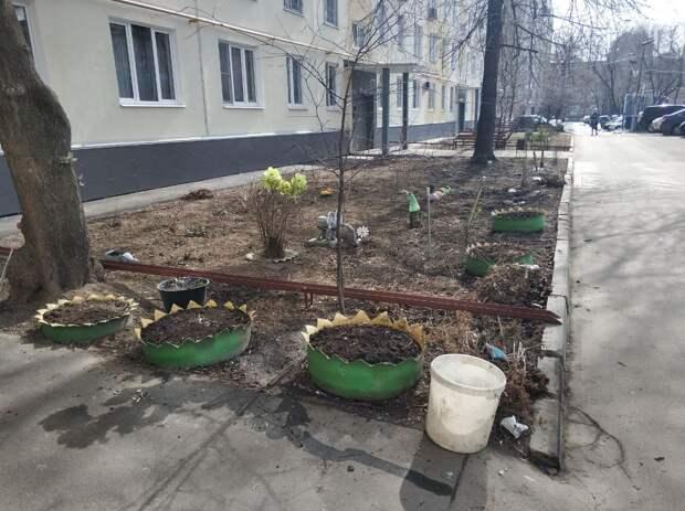 Фото дня: на Октябрьской появился палисадник