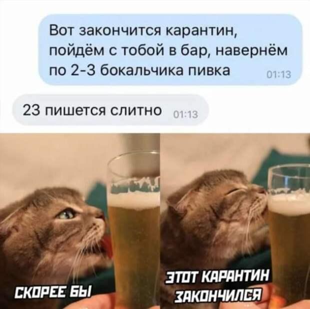 Смешные комментарии. Подборка chert-poberi-kom-chert-poberi-kom-14400623082020-10 картинка chert-poberi-kom-14400623082020-10