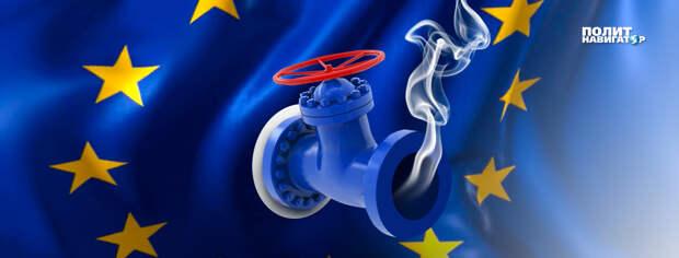 Профессор: «В новом году отошедшая от похмелья Европа будет благодарить Россию»