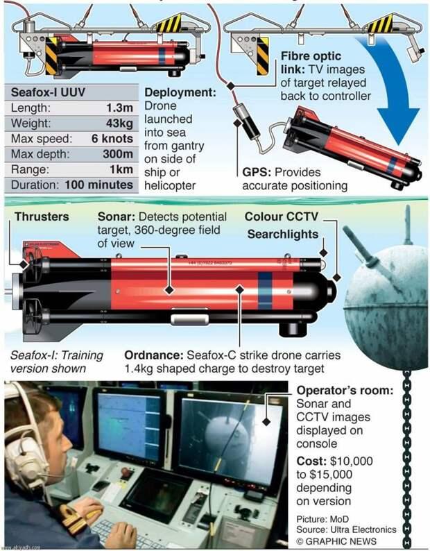 SeaFox: маленький морской лис-убийца