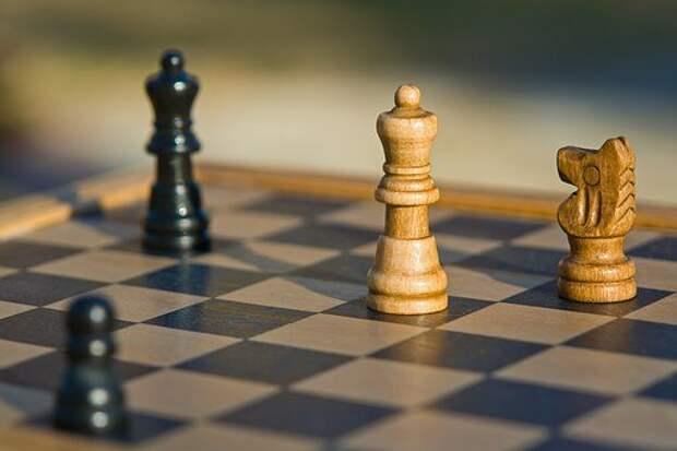 Ученики школы на 7-й Северной линии заняли первое место в шахматном фестивале