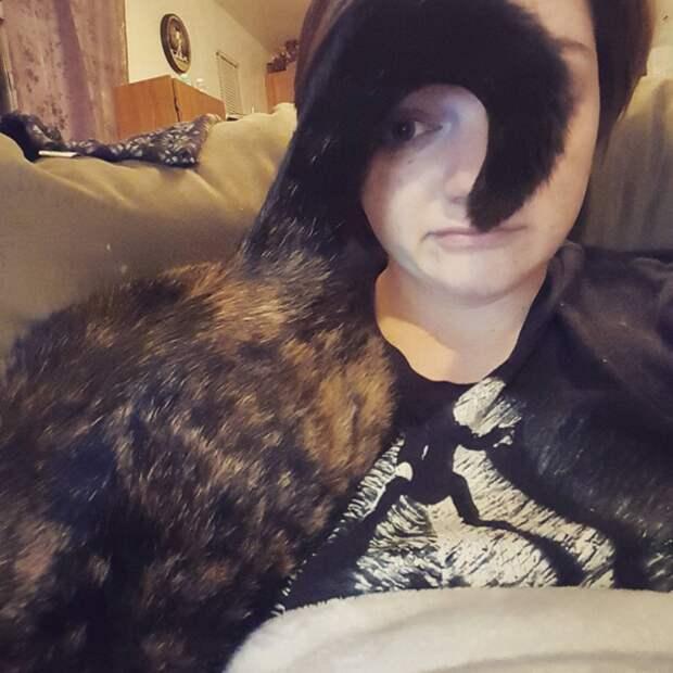 Эти фото поймёт любой, у кого есть кошка… Правдиво и смешно! :)