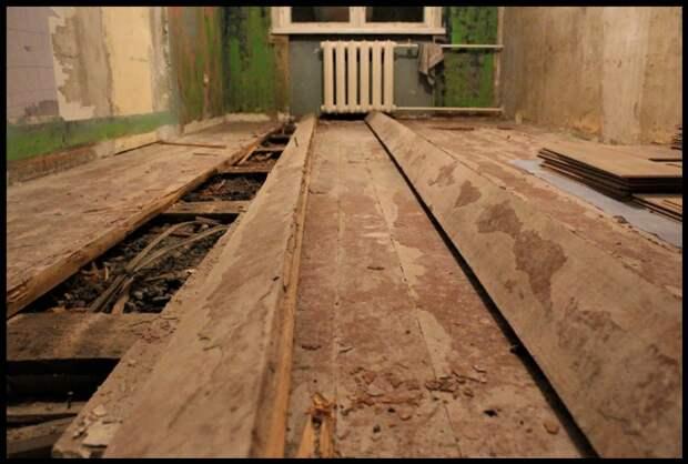 Если скрипят деревянные полы: как навсегда избавиться и что делать?
