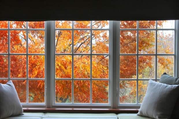 15 причин, по которым осень гораздо лучше лета