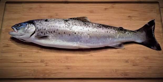 В магазине на Новопетровской продается рыба «с душком»