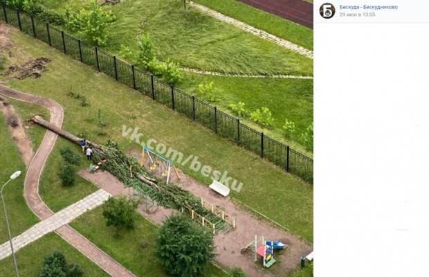 С детской площадки на Бескудниковском убрано упавшее дерево