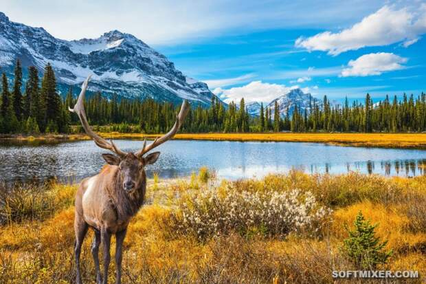 Мифы и факты о Канаде