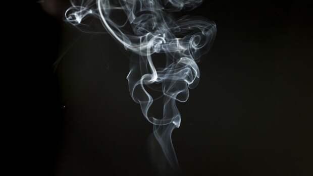 Эксперт оценил последствия роста акцизов на сигареты