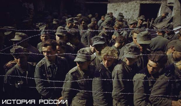 Пленные немцы на сборном пункте