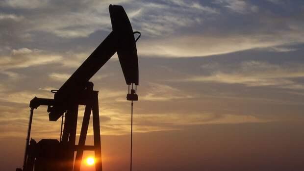 """Россия укрепит экономику и увеличит прибыль с помощью """"зеленой революции"""""""
