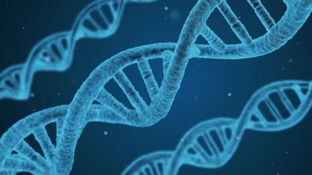 Британские ученые определили способность человека к выживанию без важного гена
