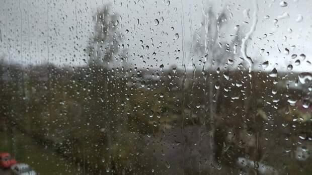 Во вторник в Петербурге ожидаются дожди, грозы и град