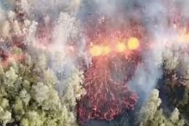 Огненная река прожигает себе путь через вековой лес