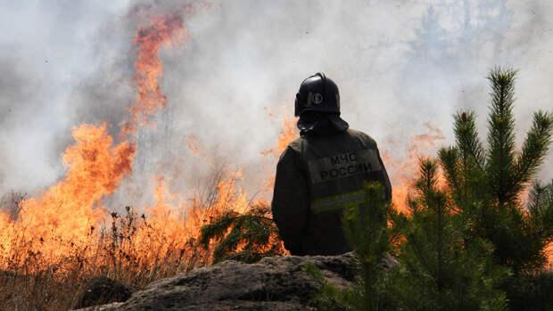 Пиролог сообщил, какие три региона России ждут масштабные лесные пожары