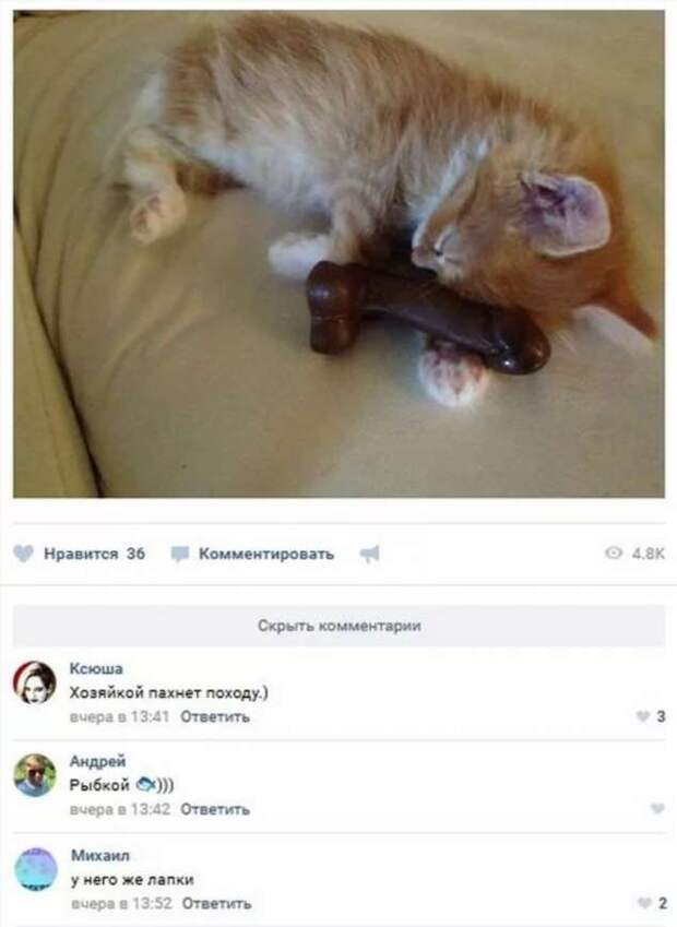 Смешные комментарии. Подборка chert-poberi-kom-chert-poberi-kom-22551017092020-15 картинка chert-poberi-kom-22551017092020-15
