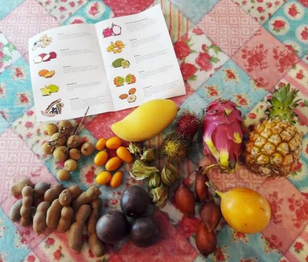 доставка экзотических фруктов