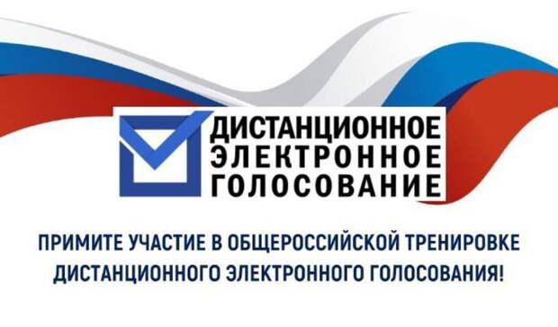 Выборы онлайн: названы даты проведения тестирования электронного голосования