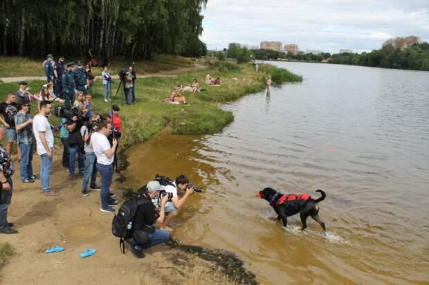 Зоны летнего отдыха москвичей находятся под особым контролем столичного МЧС