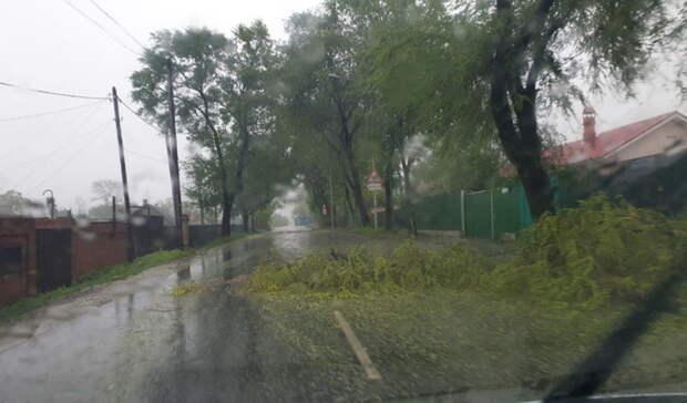 НаВолгоградскую область надвигается штормовой ветер