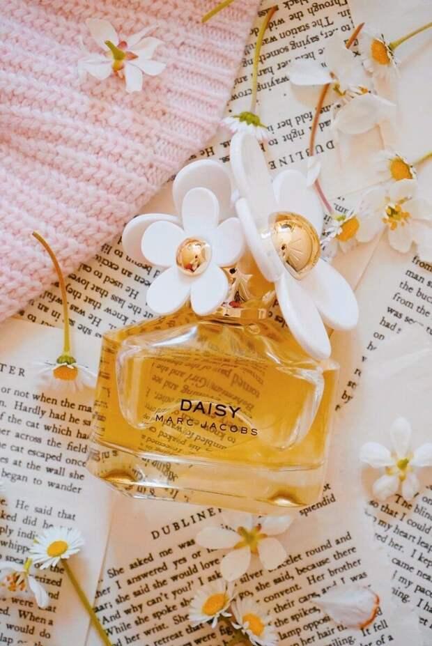Комплиментарные и «не как у всех»: весенние ароматы, которые подчеркнут индивидуальность и хороший вкус