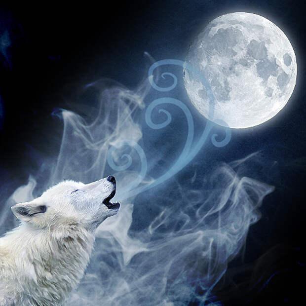 Изображения луны...