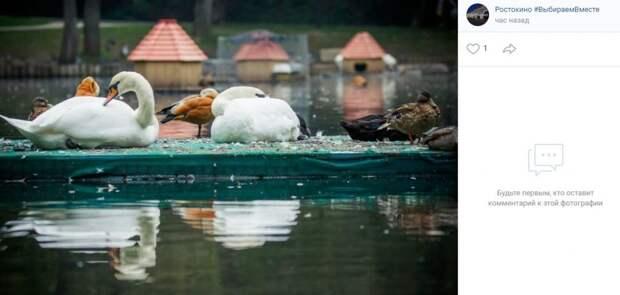Фото дня: замерзшие пернатые в «Саду Будущего»