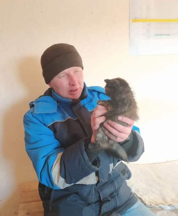 Замерзающего котенка спасли рабочие, ремонтировавшие дорогу в Удмуртии