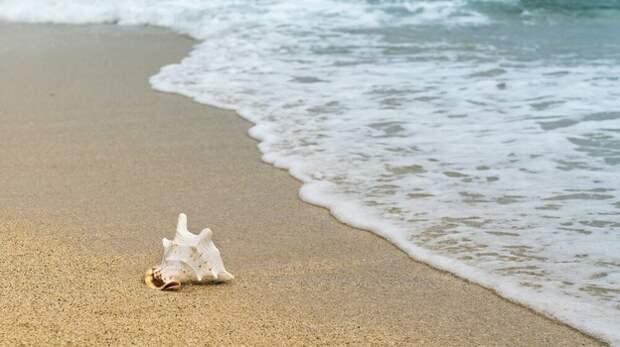 Пляжи Сакского района проверят после незаконной застройки в Витино