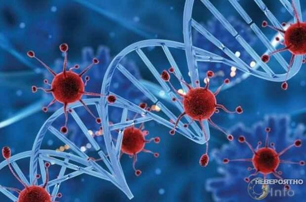 Вирус с неизвестным науке ДНК обнаружен в Бразилии