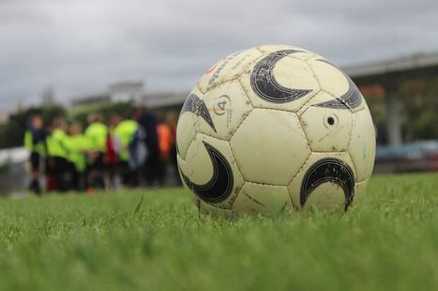 Мяч, Газон, Трава, Курс, Футбольная Площадка