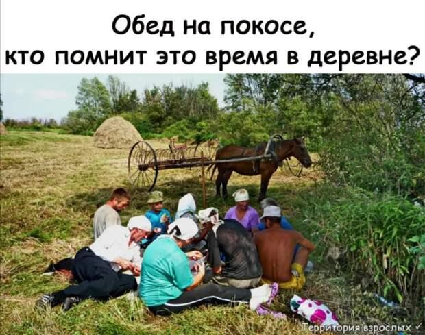 Субботник — это когда те, кто не мусорит, убирают за теми, кто мусорит. Бесплатно
